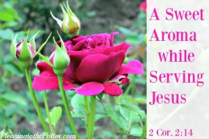 A Sweet Aroma when you Delight in Serving Jesus!