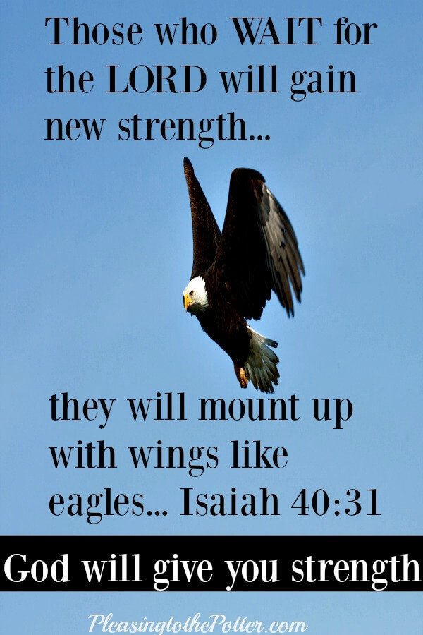 Those who wait on the Lord will gain new strength. Isaiah 40:31