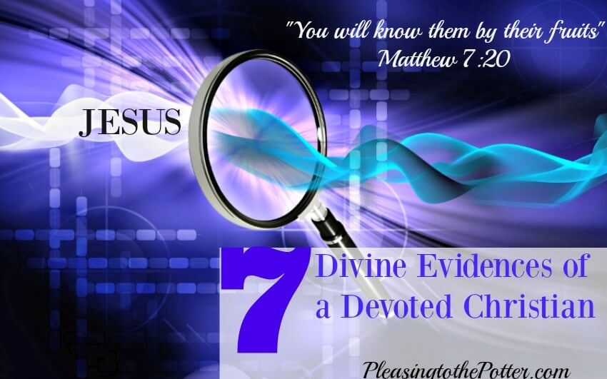 7 Divine Evidences of a Devoted Christian