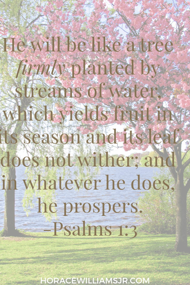 Seasons of Change- Psalms 1:3